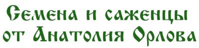 Семена и саженцы Анатолия Орлова