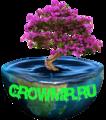 Growmir.ru